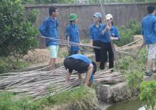 Chiến dịch mùa hè xanh 2015 tại xã Đông Phương, Huyện Kiến Thụy